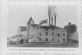 Knight Sugar Company Raymond [Alberta] [copied from article]
