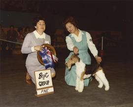 Best in Group [Terrier Group: Fox Terrier] award being presented at 1975 P.N.E. All-Breed Dog Show