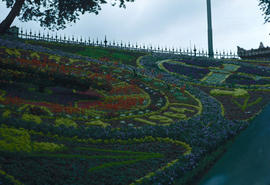 Gardens - United Kingdom : floral clock, Edinburgh