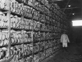 [Bread in storage for troops on the Western Front]