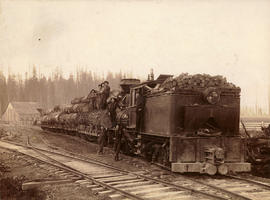 [Logging train]