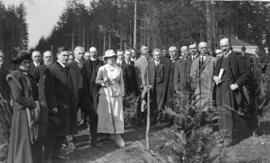 [Mrs. Jonathan Rogers plants an oak to commemorate William Shakespeare's Tercentary near pip...