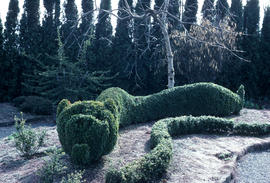 Landscape Topiary : Dragon Topiary Children's Garden
