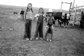 At the ranch : Cowboys [Jane Banfield, Alix Louise Gordon, John Banfield]