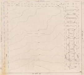 Sheet 25D [Quebec Street to 49th Avenue to Cambie Street to 57th Avenue]