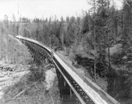 [Crow's Nest Pass Lumber Co.'s log flume at Bull River]