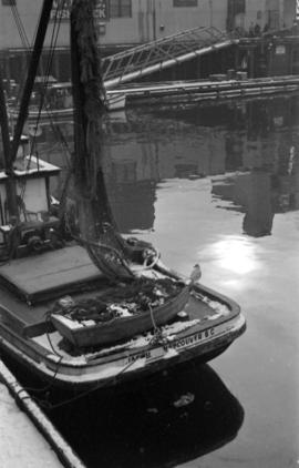 [Fishing boats at dock]