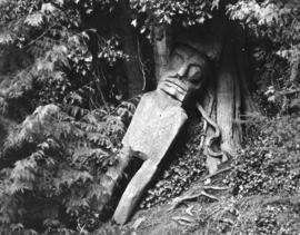 [Part of a fallen totem pole near the beaver dam]
