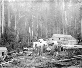 [Buildings in camp area in forest]