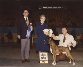 Best in Group [Working Group: Boxer] award being presented at 1976 P.N.E. All-Breed Dog Show