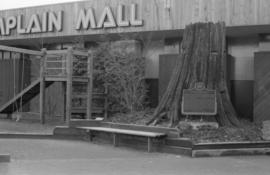 Champlain Mall - Western Red Cedar, with playground at entrance to mall