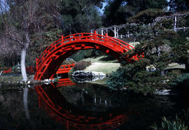 Gardens - United States : Huntington Botanical Gardens, Japanese bridge