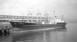 M.S. Jalamokambi [at dock]