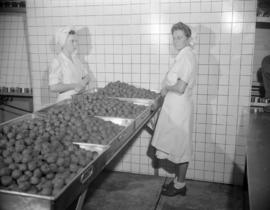 [Women standing by trays of meatballs at Hedlund's Ltd.]