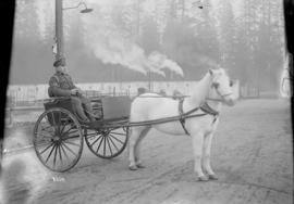 [Soldier driving a horse and cart]