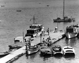 [Pleasure craft and sunbathers at floating dock]
