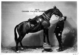 Vancouver City Police officer kissing police horse