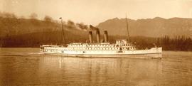 [An unidentified steamship in the harbour]