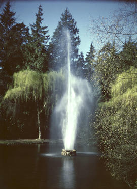 Stanley Park, fountain in duck pond
