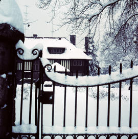 House and gate at 1402 McRae Avenue covered in snow