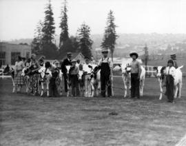 Line of youths with cattle in Junior Farmers competition