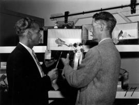 Men with award-winning caged birds in 1955 P.N.E. Poultry and Pet Stock competition