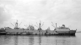 M.S. Maria L. [at dock, with lumber-filled barges alongside]