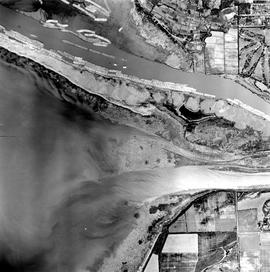 Aerial photo, vertical, Iona Island and Fraser River
