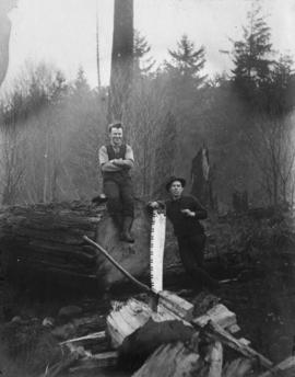 Covered with glory [two men after sawing fallen tree]