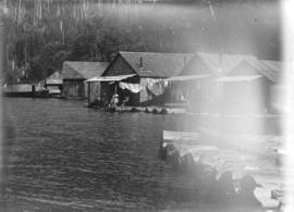 [View of houses on the shore of the Fraser River]