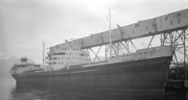 M.S. Merchant Baron [at dock]