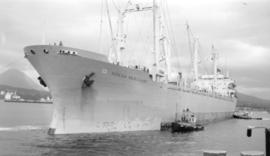 M.S. Hoegh Merchant