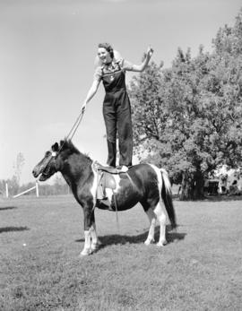 [A woman standing on a Shetland Pony at Ryan's Farm]