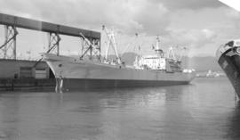 M.S. Islas Galapagos [at dock]