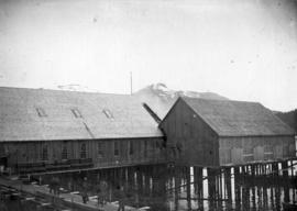 [Unidentified building at Balmoral Cannery, Skeena River]