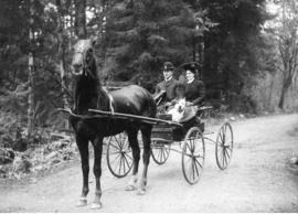 [Man, woman and dog in horse drawn carriage in wooded area]