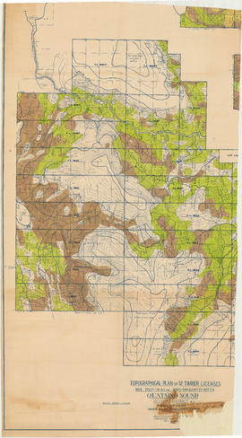 Topographical plan of 32 timber licenses. Nos. 7617-7644, 8803-8804 and 10723-10724
