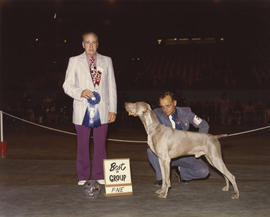 Best in Group [Sporting Group: Weimaraner] award being presented at 1975 P.N.E. All-Breed Dog Show