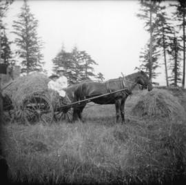 [Woman and girl on hay cart]