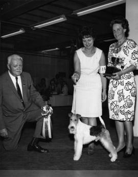 Judge presenting Best in Show award at 1967 P.N.E. All-Breed Dog Show [Fox Terrier]