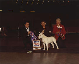 Best Canadian Bred Puppy in Show award being presented at 1974 P.N.E. All-Breed Dog Show [Bull Te...