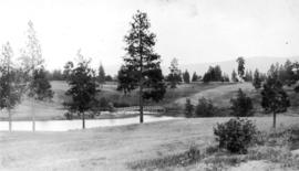 The Kelowna golf course