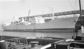 M.S. Hoegh Silverbeam [at dock]