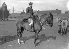 231st on parade [officer on horseback]