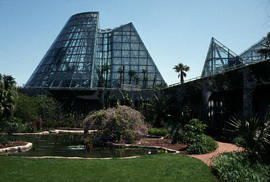 Plant protection : San Antonio Botanical Gardens conservatory
