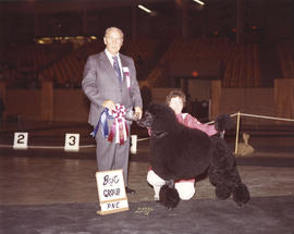 Best in Group award [Non-Sporting Group: Standard Poodle] being presented at 1974 P.N.E. All-Bree...