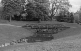 Tatlow Park, wooden bridge and pool