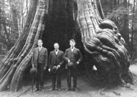 Big Jack [King with friends in front of big tree in Stanley Park]