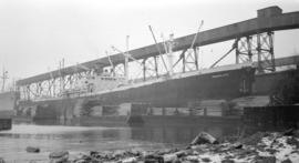 S.S. Manolito [at dock, with lumber-filled barges alongside]