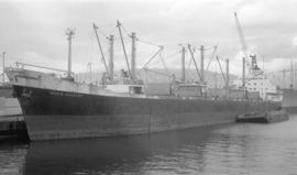 M.S. Doric Chariot [at dock]
